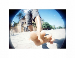 woodgrain-fisheye-photo
