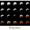 Thumbnail image for Photographs: Total Lunar Eclipse 15 June 2011