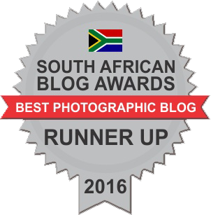 SA Blog Awards Badge