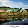 Thumbnail image for Game Reserve Photography: Mount Anderson Ranch Lydenburg