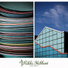 Thumbnail image for Understanding Composition: Using Patterns and Repetition