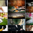 Thumbnail image for Sony Xperia Z2 Tablet – The Perfect Portable Portfolio
